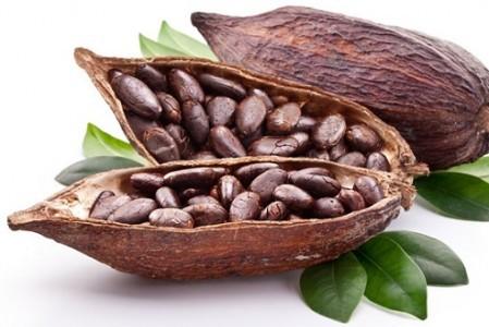 Райское блаженство: масло какао для волос