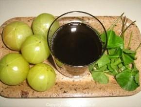 Получение масла из плодов амлы