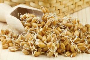 Состав масла из ростков пшеницы