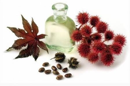 Касторовое масло для волос: непростая простая касторка