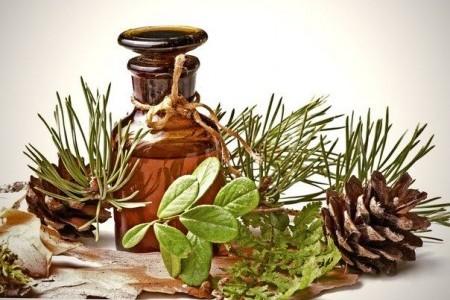 Масло пихты для волос: хвойный аромат и чудесный результат