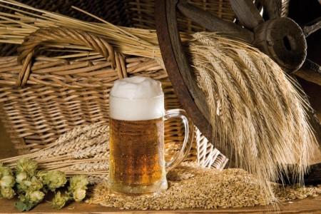Пиво для здоровья и пользы… волос